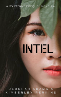 Intel ebook Cover (1)